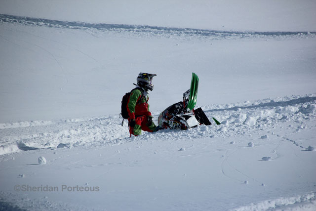 ©Sheridan Porteous sledding photography