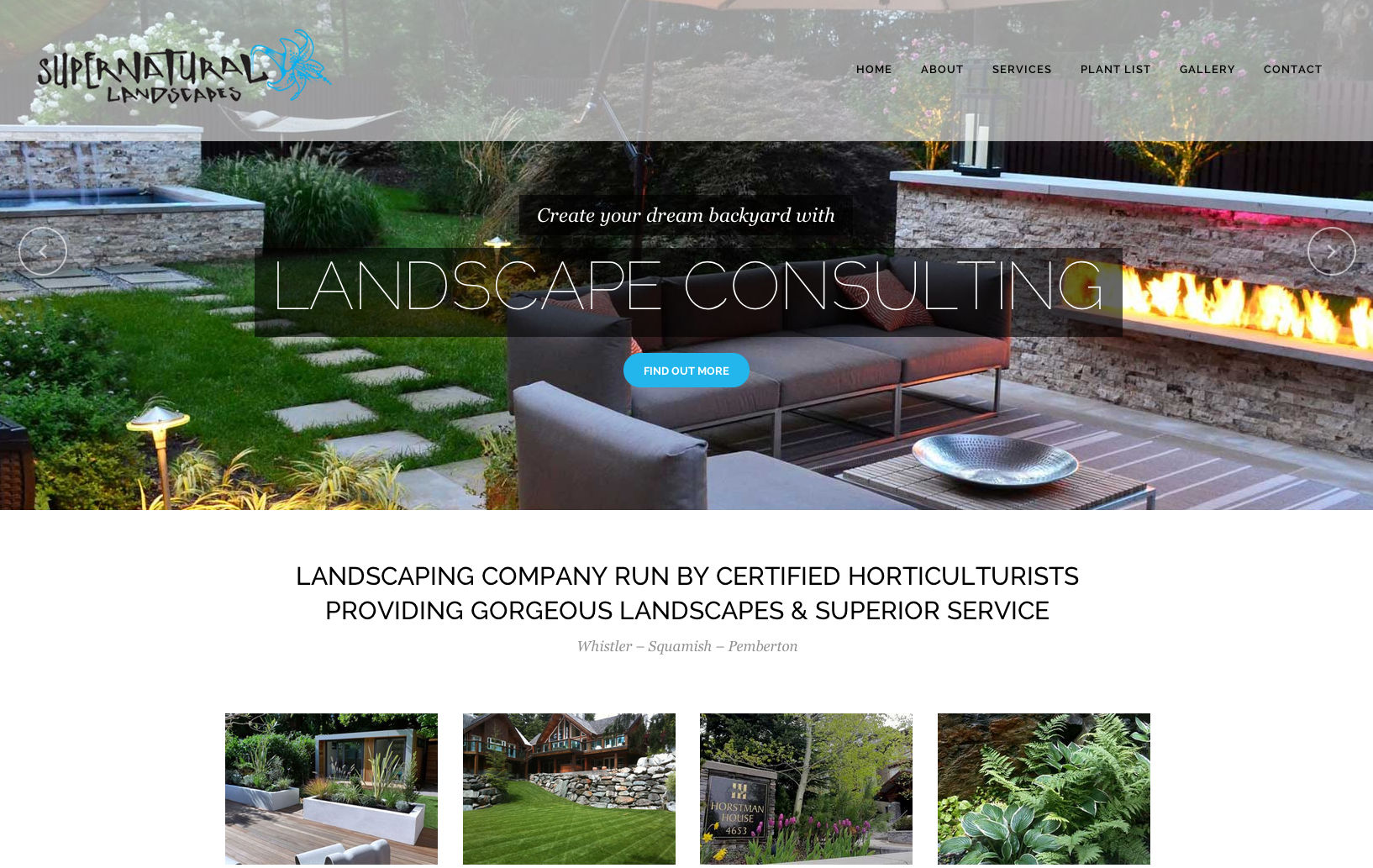 Sea Salt Web Design Whistler landscape website