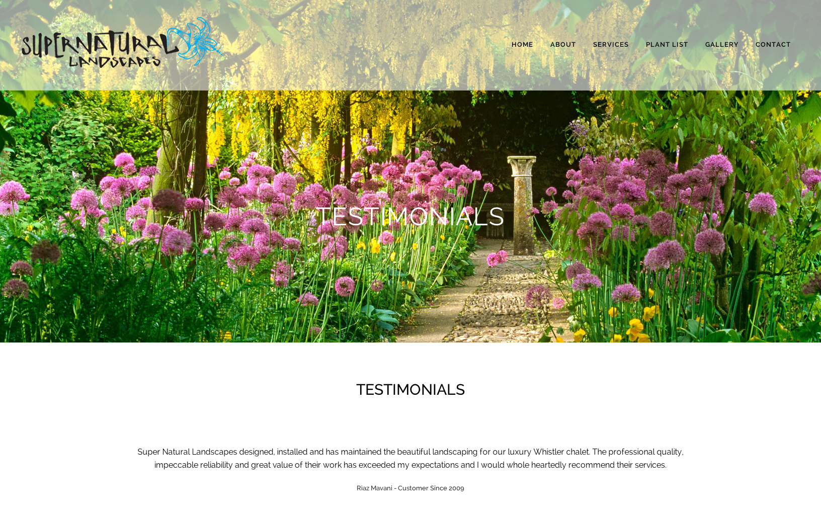 Sea Salt Web Design Whistler landscape website 3